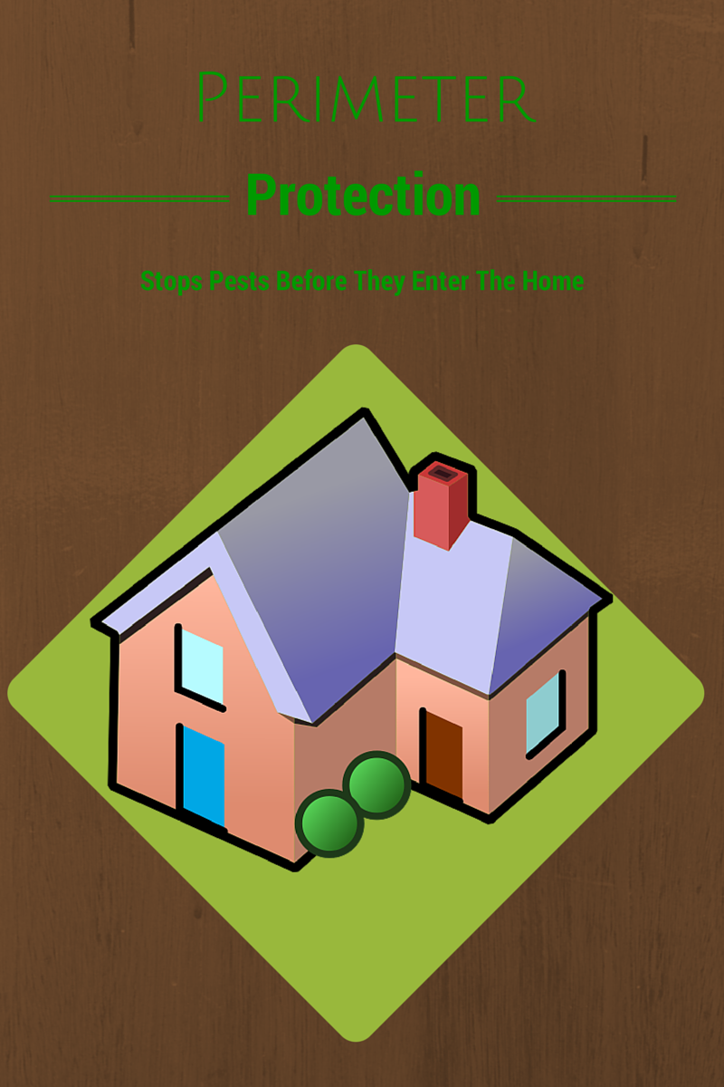 How Perimeter Services Protect Your Home